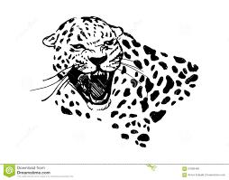 jaguar clipart jaguar clipart roar pencil and in color jaguar clipart roar