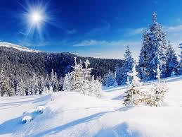 colorado snowy landscape wallpaper