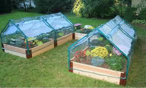 wonderful cedar raised garden bed kit cool sams club the