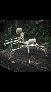Halloween Skeleton Decoration Ideas 214 Best Halloween Skeletons Images On Pinterest Halloween Stuff