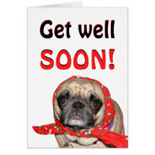 Get Well Soon Meme Funny - get well soon pug gifts on zazzle uk