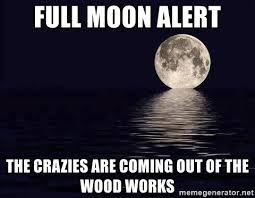 Full Moon Meme - full moon alert the crazies are coming out of the wood works full