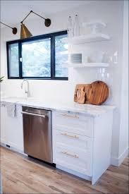 Kitchen Trash Cabinet Pull Out Kitchen Trash Can Cabinet Ikea Ikea Narrow Cabinet Pull Out