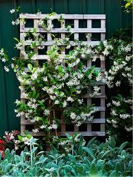 15 creative and easy diy trellis ideas for your garden
