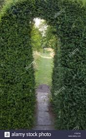 view from the middle hedge into the ornamental orchard at hardwick