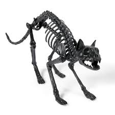lifesize black skeleton cat so that u0027s cool