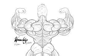 ryuuto back flex sketch by kensoudojo on deviantart