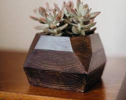 boxcar succulent planters solid walnut with robin egg blue