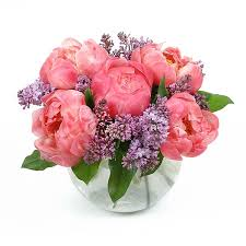 peonies delivery coral crush flower delivery nyc plantshed