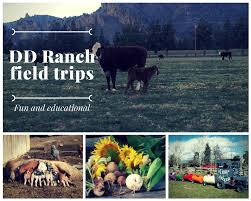 come experience a working ranch in central oregon with your school