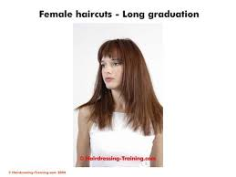 haircut for long torso fundamentals of hair cutting ppt video online download
