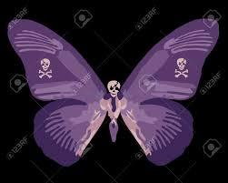 purple skull butterfly stock photo picture and royalty free
