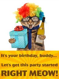 party cat funny birthday card for friends birthday u0026 greeting
