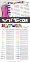 printable water tracker free printable included