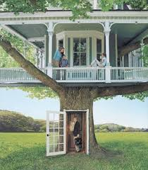 best 25 cool tree houses ideas on beautiful tree