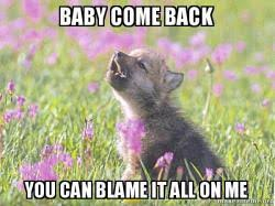 Baby Come Back Meme - baby come back you can blame it all on me baby insanity wolf