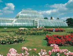 Botanic Garden Sydney Sydney Botanic Garden Hoodaki Travel Best Travel Tips For
