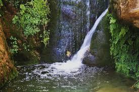New Mexico waterfalls images Sitting bull falls visit carlsbad new mexico jpg