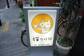 cat cafe u2013 for cat lovers u2013 my adventure abroad