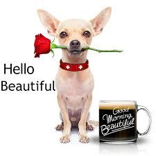 Beautiful Coffee Cups Cutie Cups Good Morning Beautiful Mug For Her 13 Ounce Candy