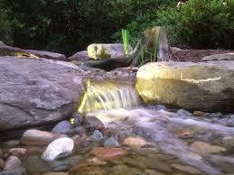 Is A Backyard Pond An Ecosystem 34 Best Backyard Ponds Fish Ponds Koi Ponds Ecosystem Ponds