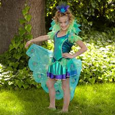 peacock costumes for kids girls peacock costume