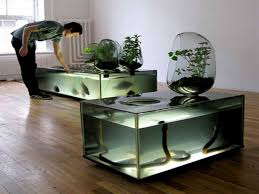 unique fish tank ideas fish tank decor ideas with snake tanks