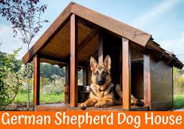 how to choose the right german shepherd dog house us bones