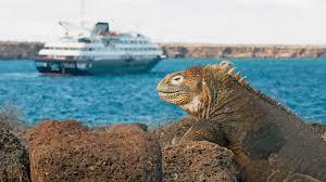 Iguana Island The Galapagos Islands Holidays 2017 2018 Kuoni