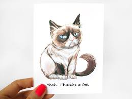 Sarcastic Cat Meme - grumpy cat card thank you card funny greeting card