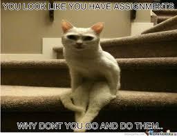 Cat Sitting Meme - sitting cat by figarooo meme center