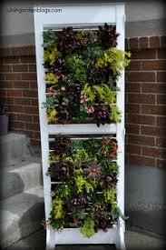 ucculent planter recycled chandelier lighting hanging basket