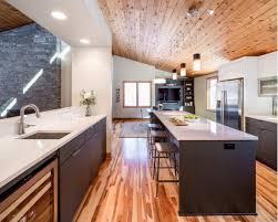 plush contemporary house interior houzz on home design ideas