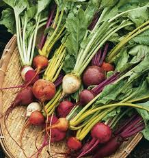 Green Root Vegetable - 31 things to do with confusing csa vegetables