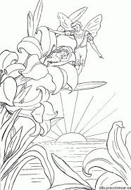 178 colorear images drawing coloring sheets