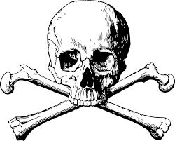 crossbones skull danger free vector graphic on pixabay