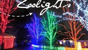 oregon zoo lights 2017 zoolights at the oregon zoo creating annual family traditions