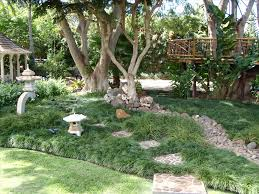 small landscape ideas no grass modern front yard landscaping with