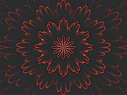 wallpaper bunga lingkaran gambar abstrak bercahaya daun bunga pola merah lingkaran