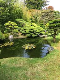 Botanical Gardens Golden Gate Park by Japanese Tea Garden In Golden Gate Park San Francisco