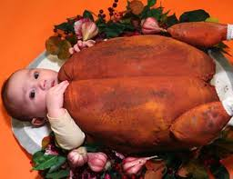 babies pets dressed in turkey costumes for thanksgiving 2014