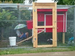 chill u0027s chicken coop backyard chickens