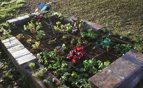 Square Foot My Approach To Gardening By The Square Foot Well Done