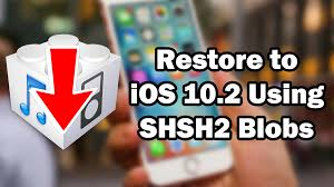 how to restore to ios 10 2 unsigned using prometheus on iphone