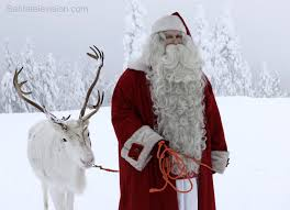 photo santa claus walking reindeer lapland finland