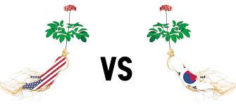 why korean ginseng is better than american ginseng alterni