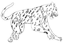 jaguar animal coloring pages realistic 530697 coloring pages for