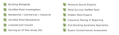 mold remediation mold removal brick nj greenworks