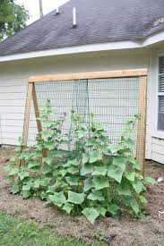 cheap garden design ideas adjustable garden trellises lgilab com modern style house