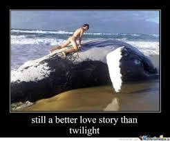 Memes About True Love - true love by pandapantz meme center